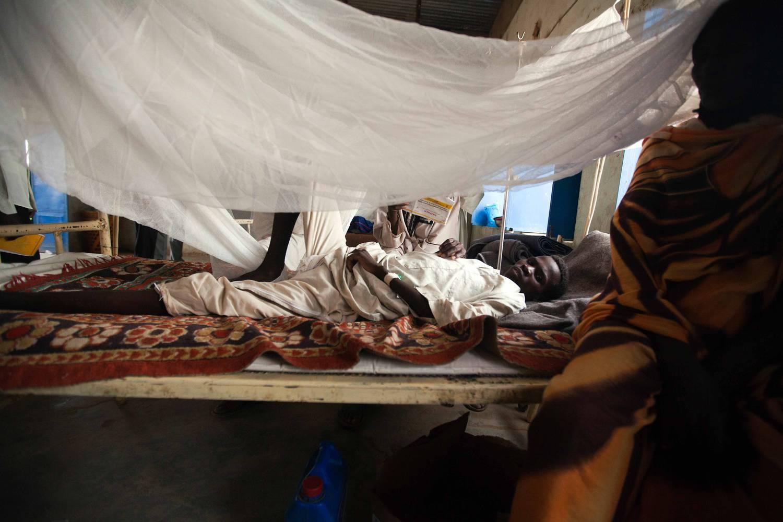 Malária tünetei és kezelése