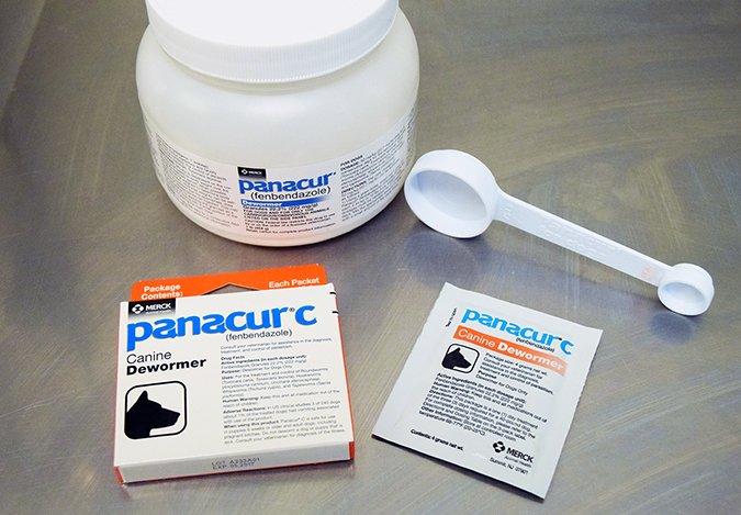 giardia treatment panacur)
