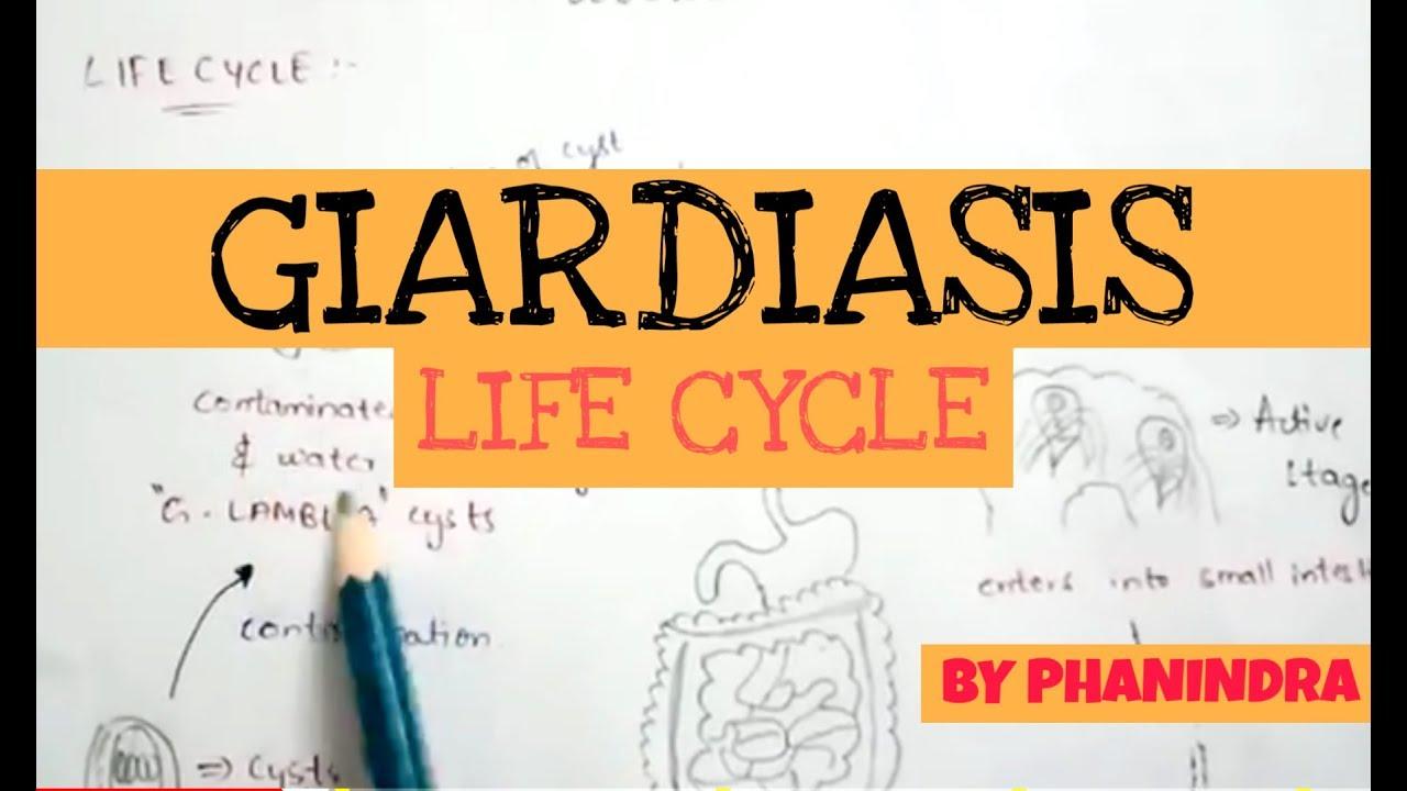 giardiasis kezelése tablettákkal aszcariasis differenciáldiagnosztika