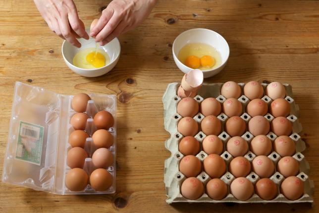 típusú helminták hogyan azonosíthatók tojás alapján