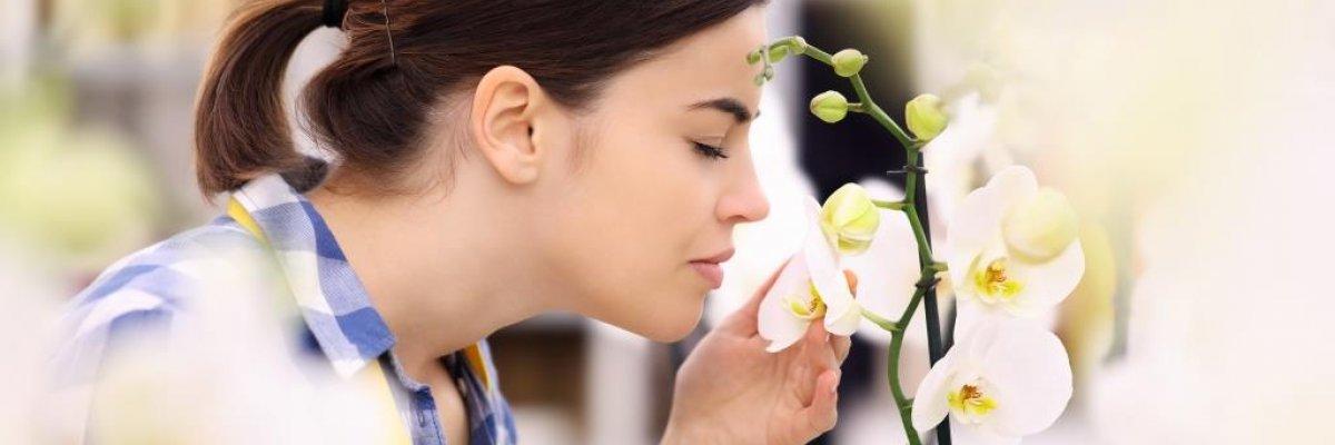 ammóniás szagot okoz