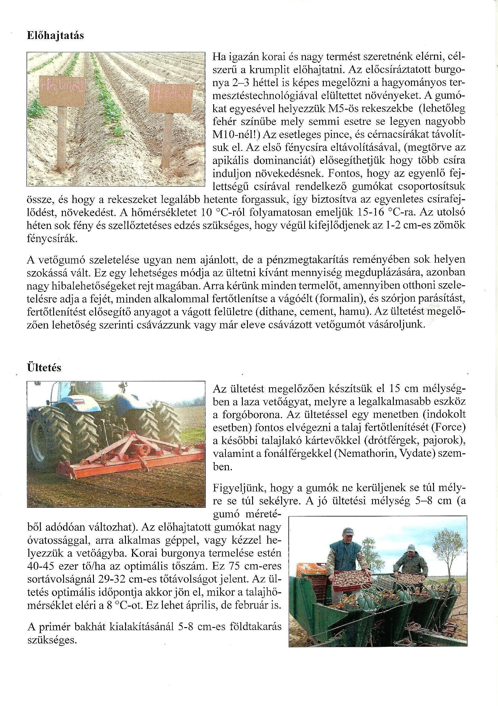 talaj által terjesztett helminták folyóiratok