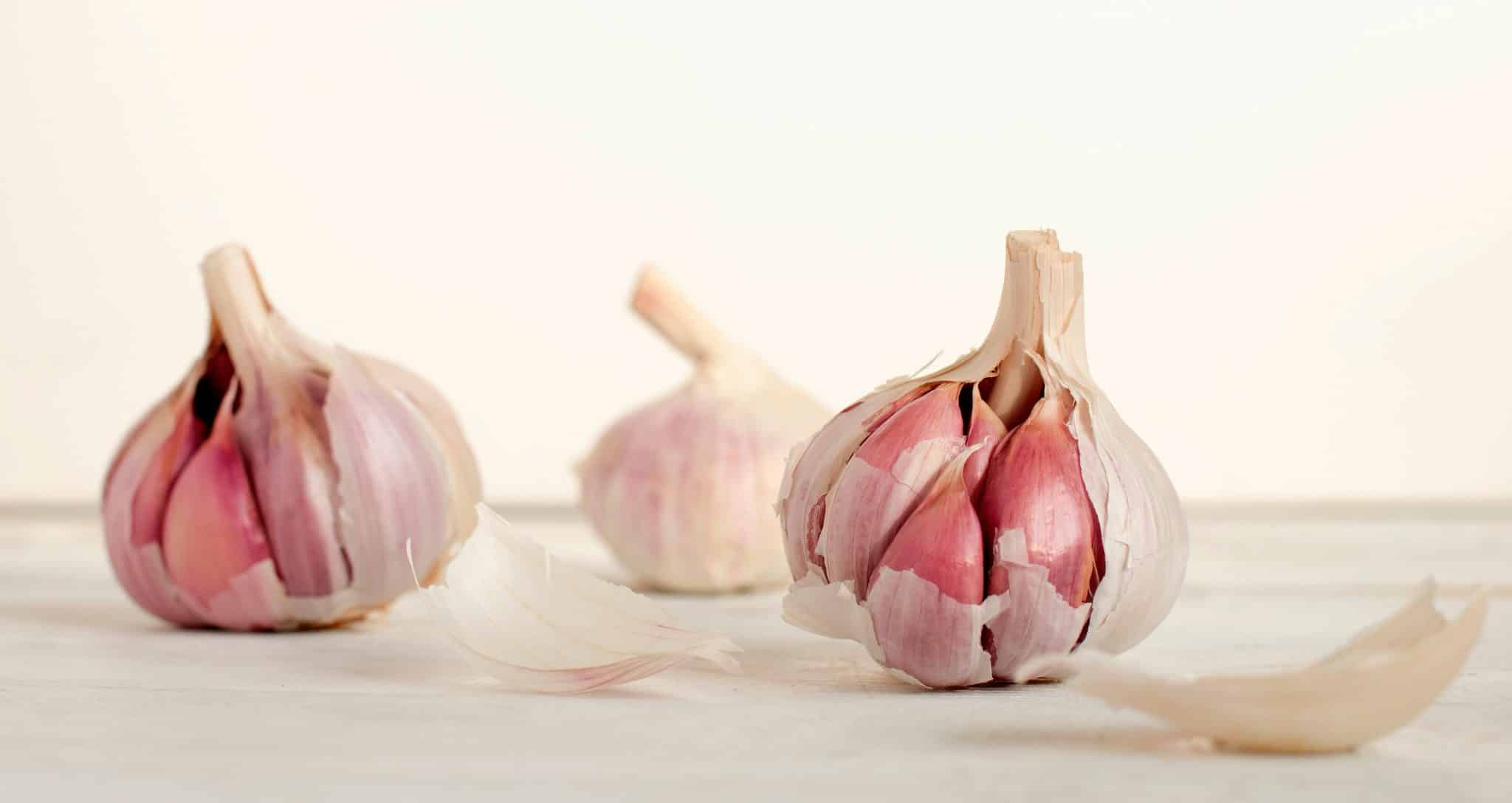 giardia natural treatment garlic)