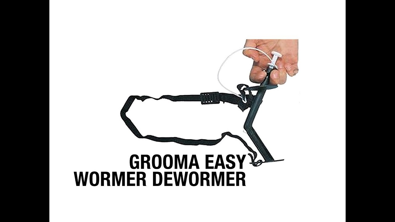 deworming jelentése