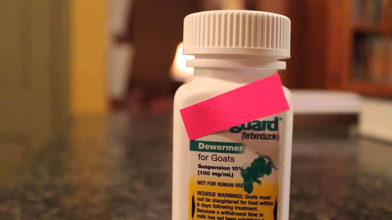 giardia medicine