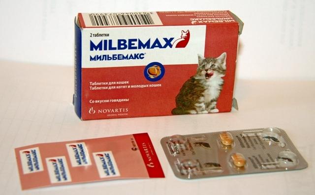 Felnőtteknél kerekférgek elleni gyógyszerek