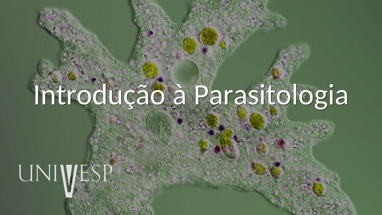 societys paraziták blogspot